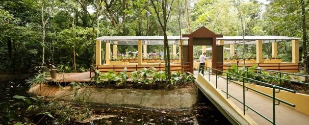 O Jardim Botânico do Recife um dos últimos setores de Mata Atlântica da cidade, foi requalificado.